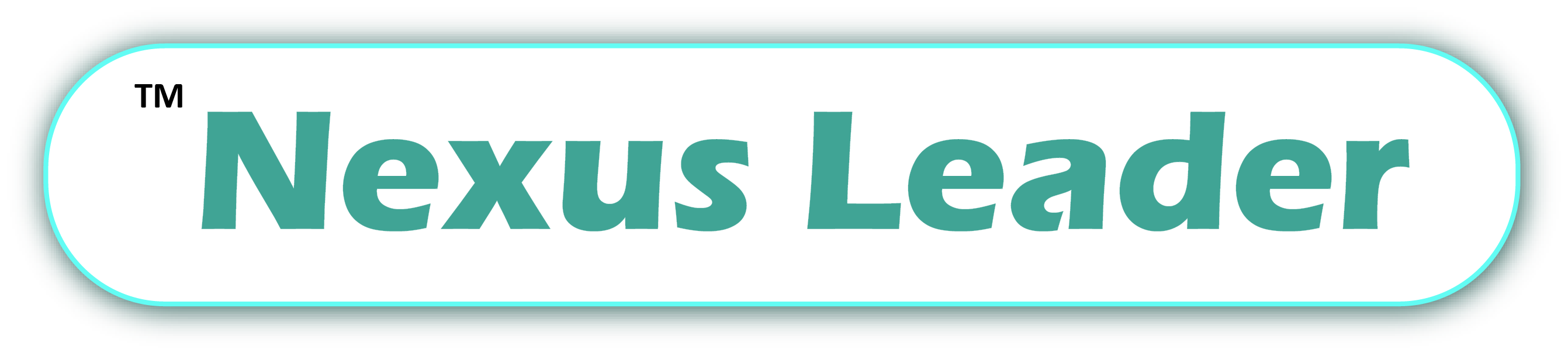 Nexus Leader — Leader of Web Solutions