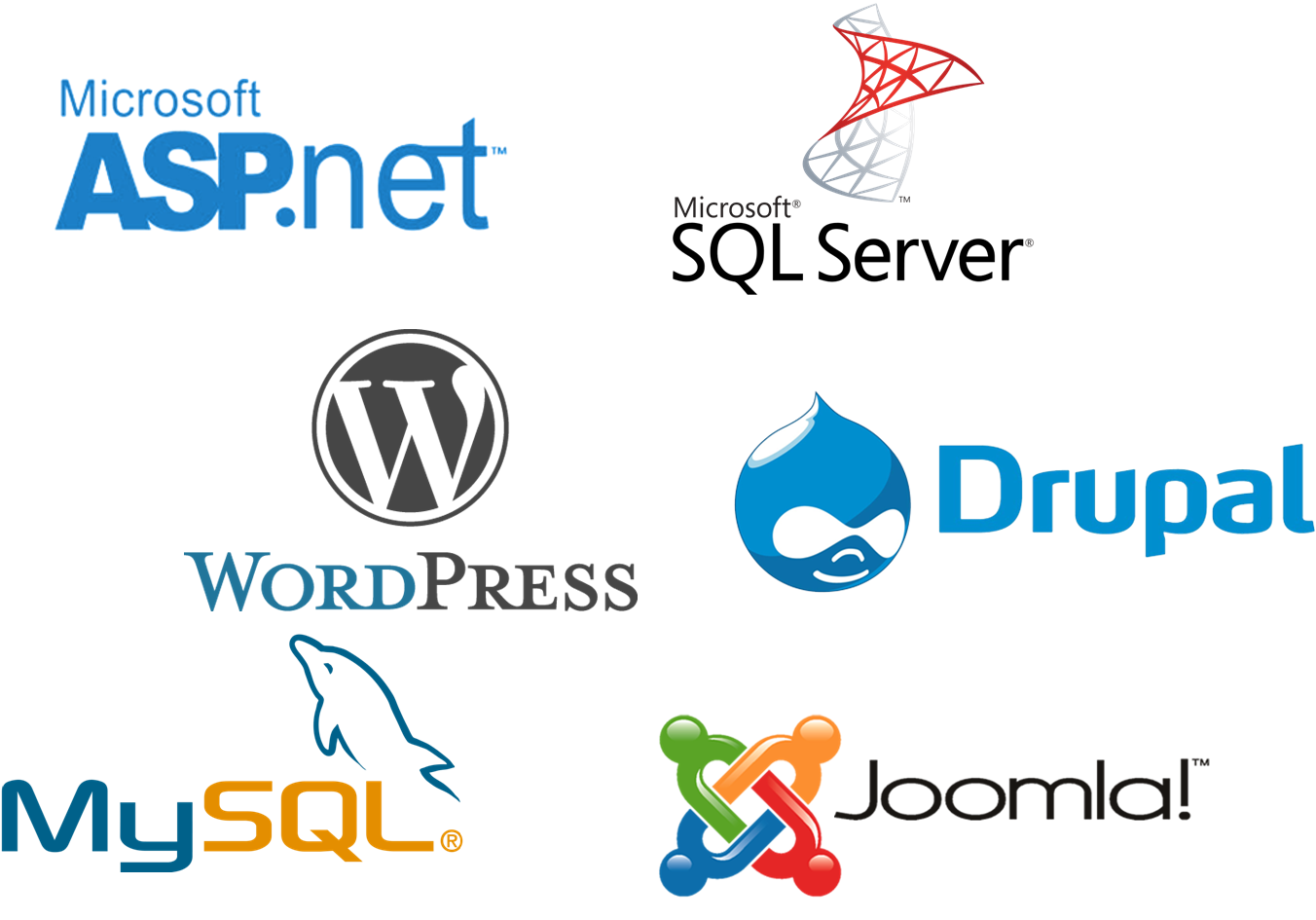 Nexus Leader-Web Hosting 1-click install of 70.+ free CMS applications(WordPress, Drupal, MySQL,ASP.NET,Joomla, MSSQL , etc.).
